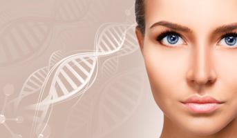 CGF・AFG療法による骨造成への再生医療の応用